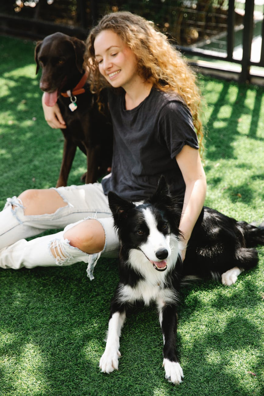 content woman embracing border collie and hunting dog on lawn