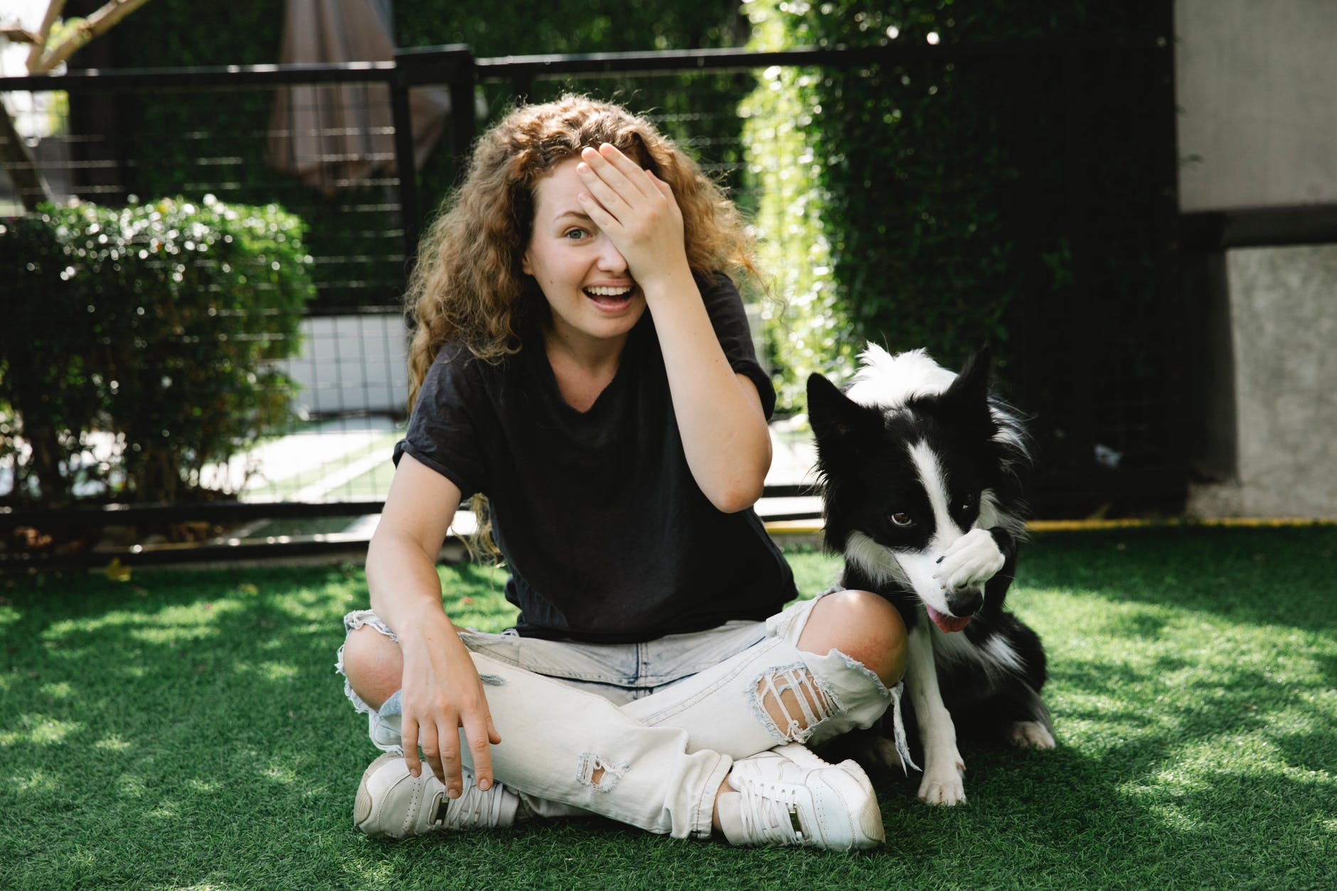 content woman taming border collie on lawn